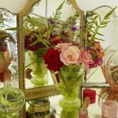 steyning-ashburton-flowers