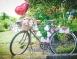 wedding-bicycle-styling